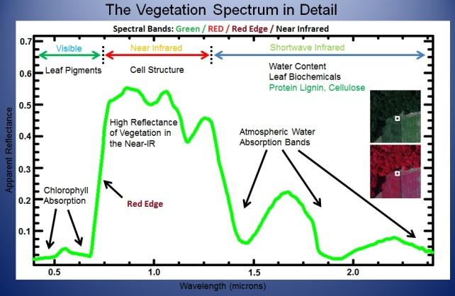 Capteurs d'imagerie multispectrale pour l'agriculture utilisant des bandes spectrales de végétation