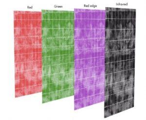 Bandes d'onde d'imagerie multispectrale de rouge, vert, bord rouge et infrarouge